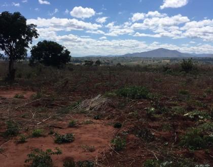 Potential Kwenderana plot of land